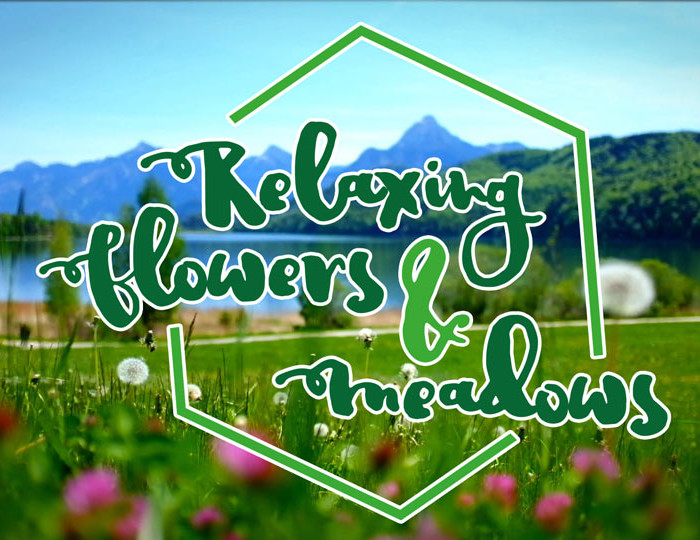 RELAXING FLOWERS & MEADOWS